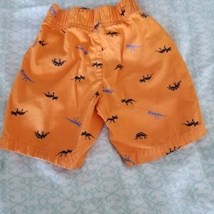 Swim - Like new boy's shorts bundle!